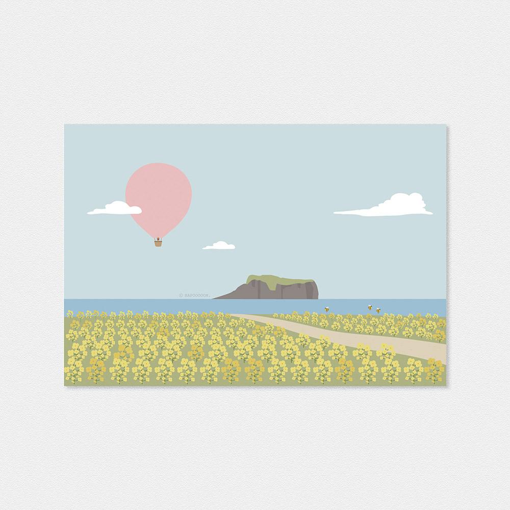 제주도 유채꽃밭 엽서